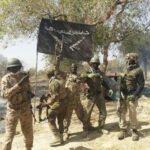 Jihadists kill five aid workers in Borno