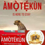 FG can't determine how we run Amotekun... South West Govs