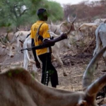 We've been marginalized by NEDC, Fulani herders complain
