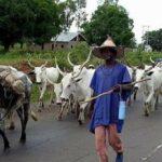 Suspected herdsmen kill five in Plateau attack