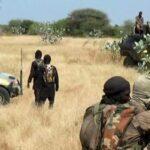 Suspected Jihadists kill 10 Malian soldiers in overnight ambush