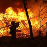 Forest fire kills two in Algeria