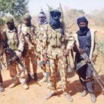 Declare Bandits As Terrorists, Senate Tells Buhari