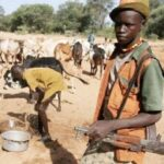 Herdsmen abduct pregnant woman, two others in Ogun, demand N30m ransom